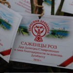 В ПАРКЕ ВЫСАДИЛИ БОЛЕЕ 60 ДОНЕЦКИХ РОЗ