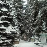 АЛЕКСЕЙ ТРАВКИН. ЗИМНЯЯ ФОТОПРОГУЛКА ПО ПРОСПЕКТУ ЛЕНИНА