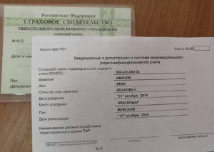 СНИЛС МЕНЯЕТ ФОРМАТ