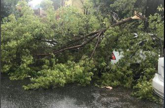 Синоптики опять предупреждают о возможном разгуле стихии на Ставрополье