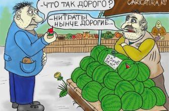 «Незаконные» дыни и арбузы чреваты административным штрафом!