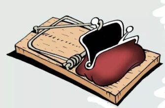 В отношении кисловодчанки, похитившей кошелек у коллеги, заведено уголовное дело