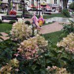 Бархатный сезон в Кисловодске