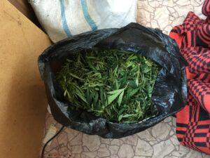Задержан кисловодчанин, хранивший дома растительные наркотики