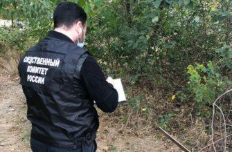 По факту убийства младенца в Невинномысске возбуждено уголовное дело.