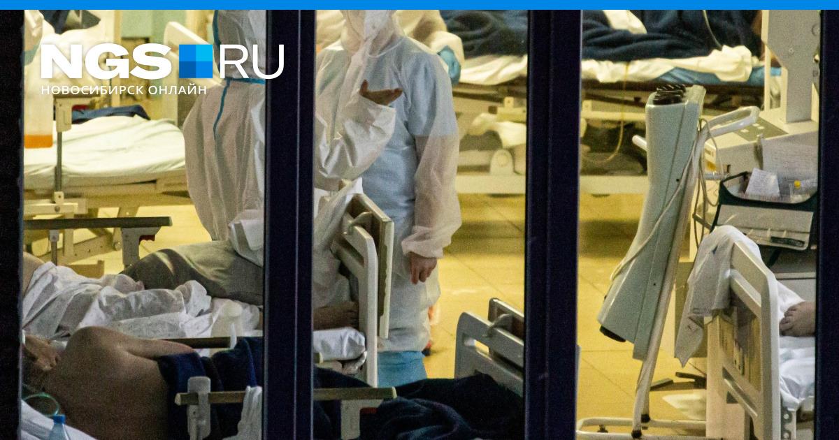 Пандемия 19 ноября: в России, в Ставропольском крае и в мире