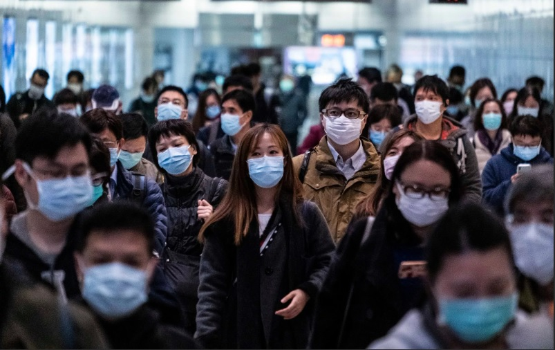 Пандемия COVID-19. 1 ноября