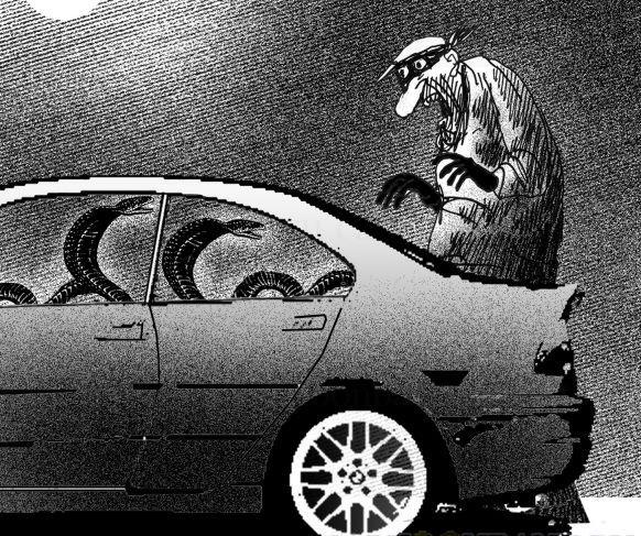 Автомобильного вора подвела жадность