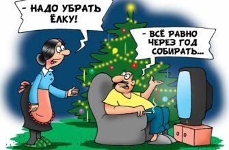 Регоператор «ЖКХ» обещает вывезти елки от населения вместе с крупногабаритом без доплаты