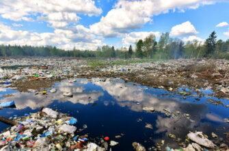 Неужели в России все-таки серьезно взялись за экологию?