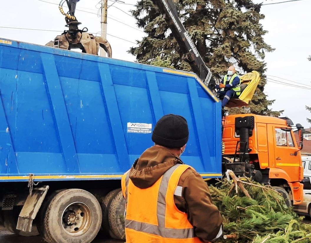 После новогодних праздников 30 кубометров зеленой хвои отправили  на конеферму