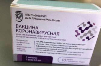 Пандемия 20 февраля: в России, в Ставропольском крае и в мире