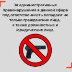 Задержаны более 70 подпольных оружейников в 28 регионах и сбывавший оружие депутат Ленобласти