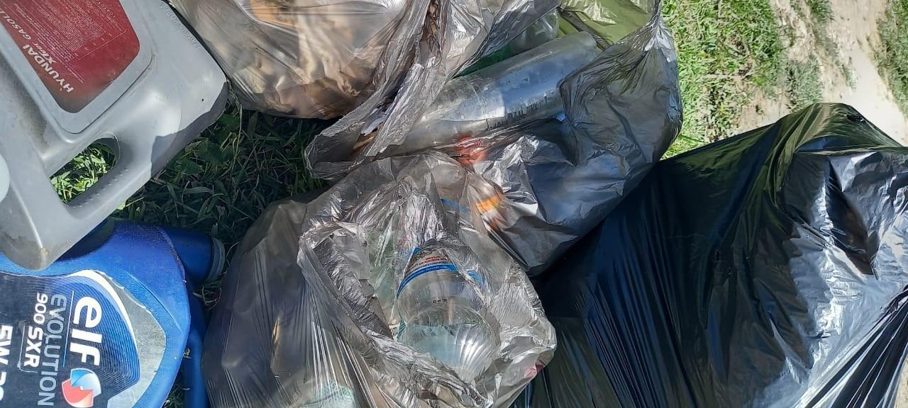 Кисловодские журналисты приняли участие в очистке Нового озера