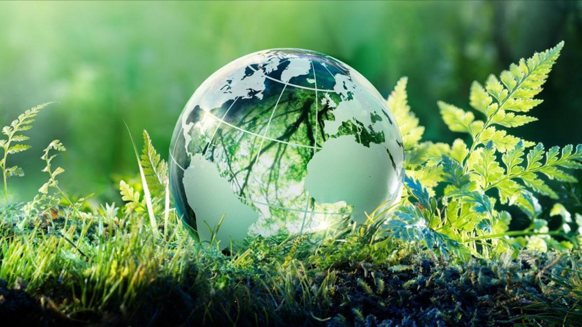 Внимание: 5 июня - Всемирный день окружающей среды, присоединяйтесь к акциям!
