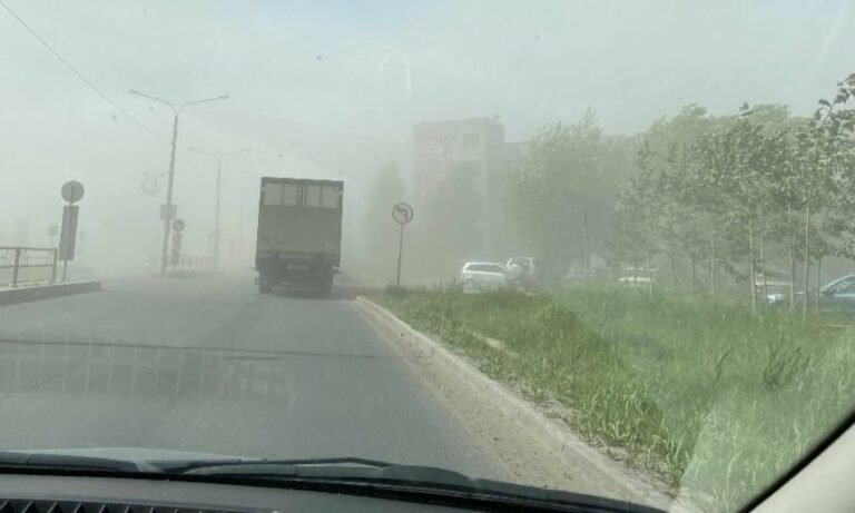 Причиной пыльной бури на Ставрополье стала массовая вырубка деревьев?