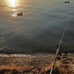 Андрей Прокопенко. Летний закат на Новопятигорском озере