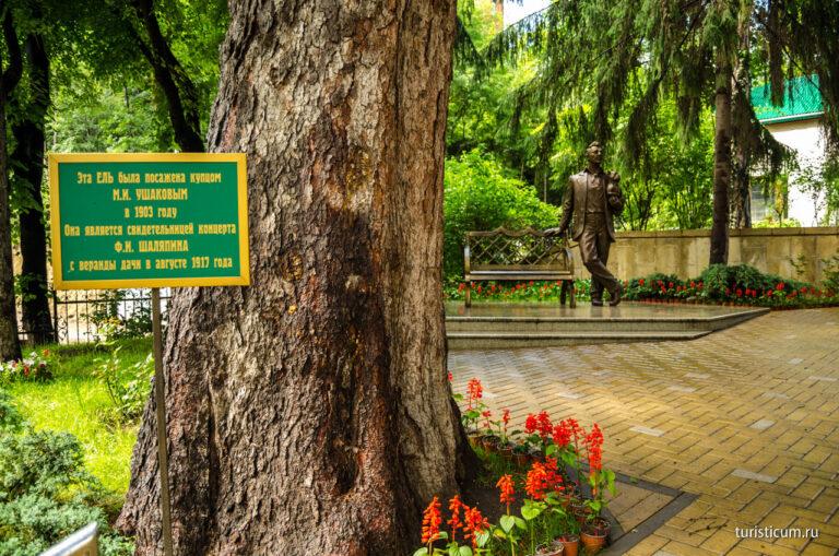 «Шаляпинская ель» Кисловодска - серебряный призер Всероссийского конкурса